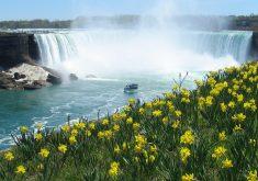 به 4 دلیل باید از آبشار نیاگارا دیدن کنید