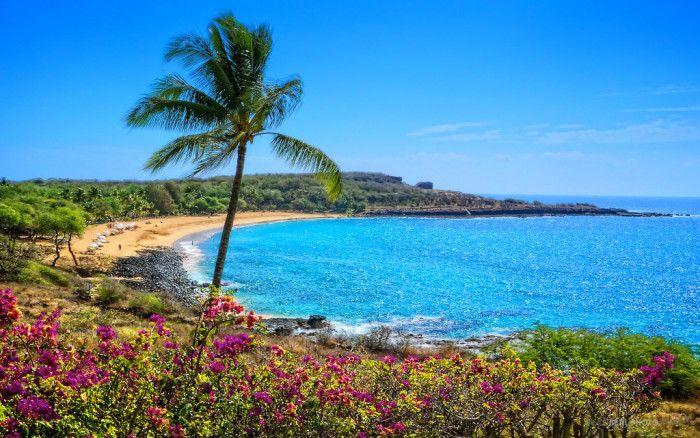 22 ساحل زیبای هاوایی که باید پیش از مرگ از آنها دیدن کنید