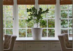 11 روش برای مراقبت از گیاهان آپارتمانی در فصل زمستان