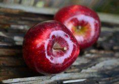 25 حقیقت درباره سیب