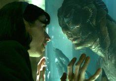 """معرفی فیلم """"شکل آب"""" (The Shape Of Water)؛ آیا عشق همیشه به یک شکل ظاهر میشود؟"""
