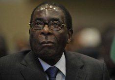 10 حقیقت جالب درباره زیمباوه (زیمبابوه)