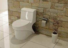 نحوه تمیز کردن و جرم گیری توالت فرنگی+ویدیو