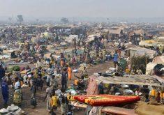همه چیز درباره جمهوری آفریقای مرکزی