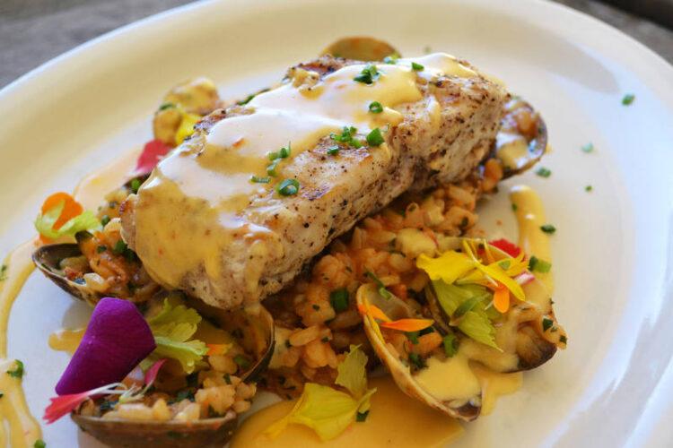 نحوه طبخ گوشت کوسه به روش های مختلف