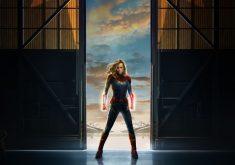 نگاهی به نقش بری لارسون در فیلم مورد انتظار Captain Marvel