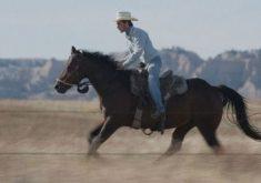 فیلم  The Rider توسط انجمن ملی منتقدان فیلم آمریکا به عنوان بهترین فیلم سال انتخاب شد