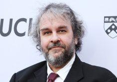پیتر جکسون، کارگردان مجموعه فیلم های ارباب حلقه ها،  در حال ساختن مستندی درباره ی گروه موسیقی بیتلز است