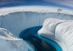 معرفی بهترین مستندها درباره طبیعت که دید شما را به جهان تغییر خواهند داد