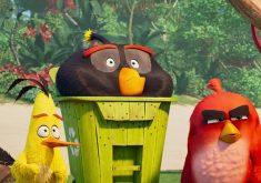 تریلر پایانی انیمیشن مورد انتظار The Angry Birds Movie ۲ منتشر شد + ویدئو