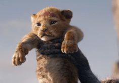 گزارش باکس آفیس آخر هفته: شروع طوفانی و قدرتمند لایو اکشن The Lion King در افتتاحیه ی اکرانش