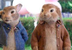 اولین تریلر رسمی از انیمیشن موردانتظار Peter Rabbit 2: The Runaway منتشر شد + ویدئو
