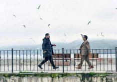 گزارش فروش هفتگی سینمای ایران