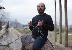گزارش فروش هفتگی سینمای ایران: صعود جهان با من برقص و ادامه صدرنشینی مطرب